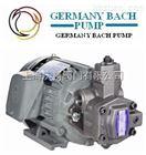 原装德国进口双联可变容量叶片泵