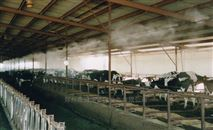 养殖场喷雾除臭设备