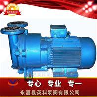 SKA水环式真空泵