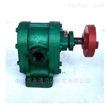 2CY系列皂液油泵 卧式齿轮油泵