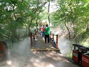 人造雾设备/自然的结晶/洗涤过的空气