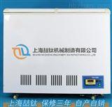 销量DW-40混凝土低温试验箱