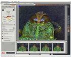Leica LAS Multif徕卡显微镜软件