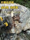 YGF遵义市静态破石头机器硬石头破裂机质量保证