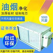 低空5000风量工业餐饮油烟净化器