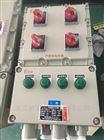BXM-DIP水泥厂粉尘防爆照明配电箱控制箱