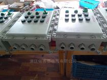 BXD51-10KBDG58-10回路 防爆动力配电箱带电磁起动