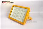 CCD97防爆LED免维护泛光灯马路灯