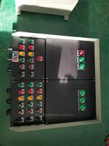 BXK8050-A12 带十二钮控制箱 塑壳  防爆防腐