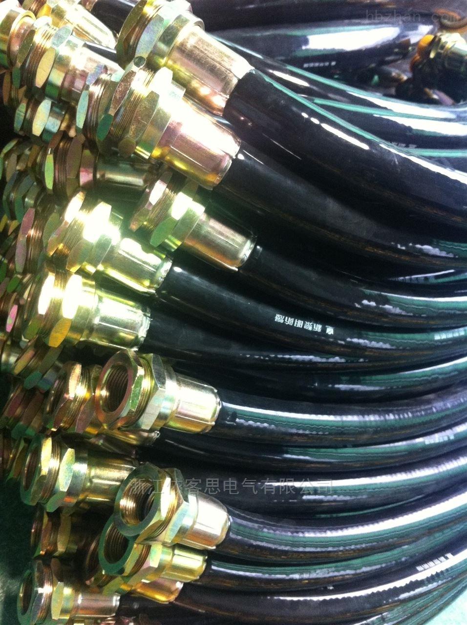 BNG防爆挠性接线管G3/4''内 M20*1.5外L700