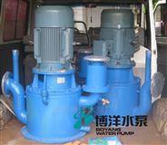 铸铁立式高流量自吸泵