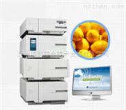 维生素分析仪(漾林YL9100液相色谱仪)