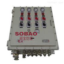 BXM(D)51防爆动力照明配电箱