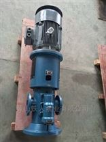 Screw pump/HSNS440-36W1大型螺杆锈死