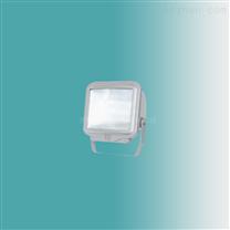 GT301-G防水防尘防震防眩灯,GT301-G