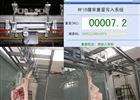 上海高精度轨道轨道秤,高精屠宰轨道电子秤
