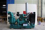 柴油機式雙吸自吸泵
