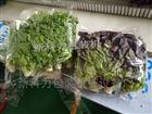 自动蔬菜包装机械