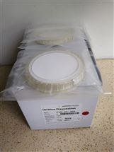 Sartorius无菌凝胶过滤膜17528-80-ACD
