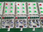 BXX51防爆控制配电箱-防爆检修电源插座箱