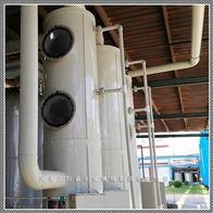 BJS盐酸废气吸收塔供应