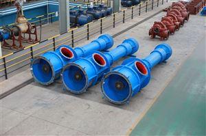 VCP立式長軸泵廠家