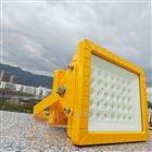 NFC971070W-免维护led防爆路灯100W