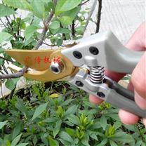 果树园艺剪盆栽剪葡萄树枝剪