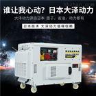 TO18000ET大澤動力15kw靜音柴油發電機