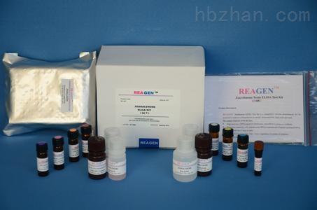 2禽疱疹病毒2型LAMP试剂盒