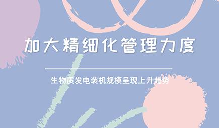 """中国绿色能源产业之""""生物质能""""市场发展现状和前景分析"""