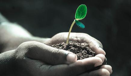 关于《广东汕头市土壤污染防治2018年工作方案》的解读