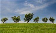 土壤修复行业发展趋势分析 多种商业模式将成为未来发展方向