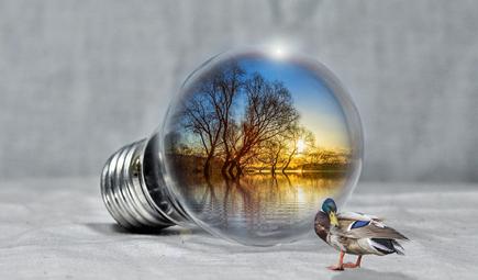 2018扶贫日生态环境保护与减贫论坛召开