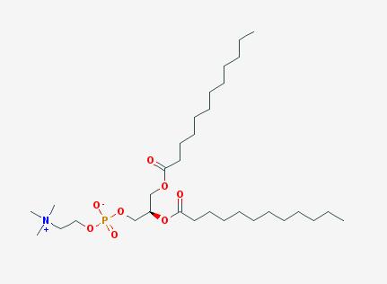 供应商:西安凯新生物科技有限公司 : 结构式: dapc,二花生酰基磷脂酰