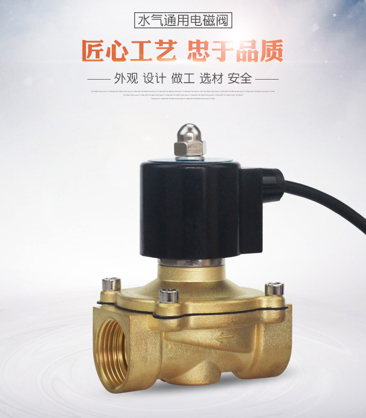 2a 全铜水下喷泉室外防水电磁阀220/24v  2a系列电磁阀是自动控制系统图片