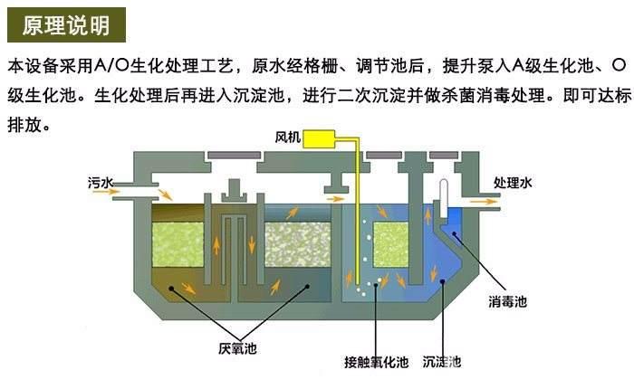 不仅与颗粒,絮凝体的形状有关,更重要的受水,气,粒三相 界面性质的