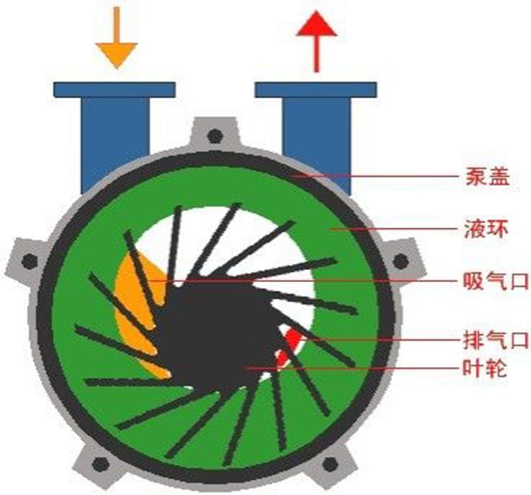 SKA型真空泵结构图