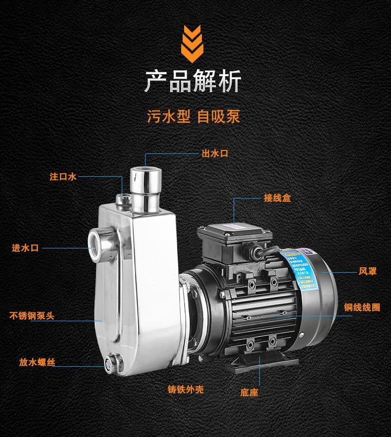 小型防腐自吸泵