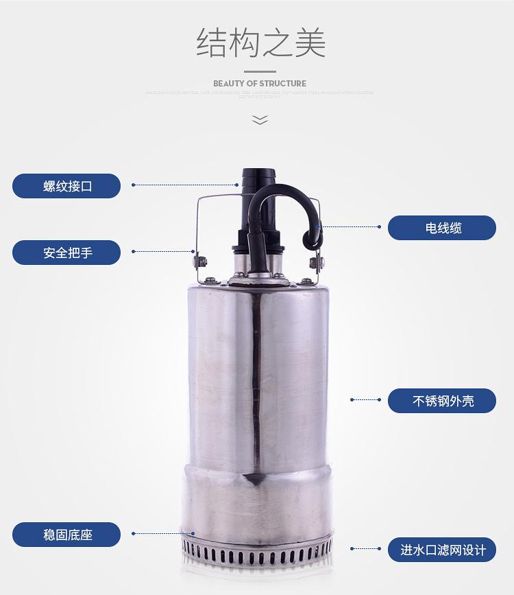 低水位潜水泵结构图