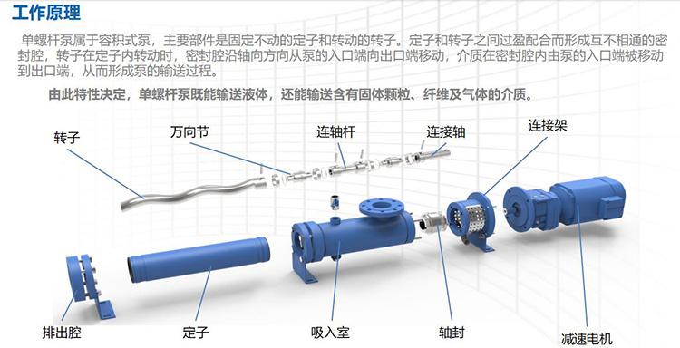 螺桿泵結構圖