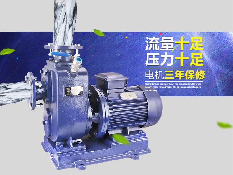 ZWL自吸排污泵