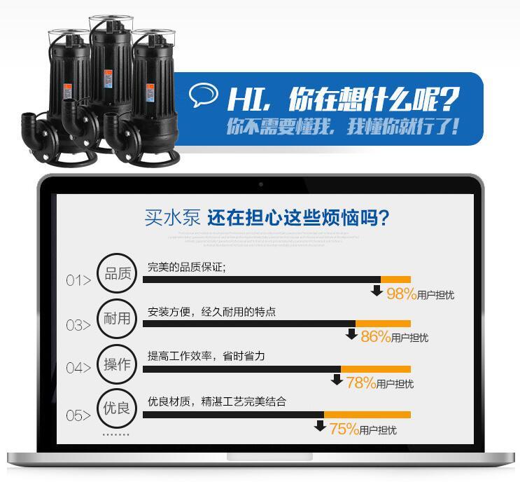 AS排污泵